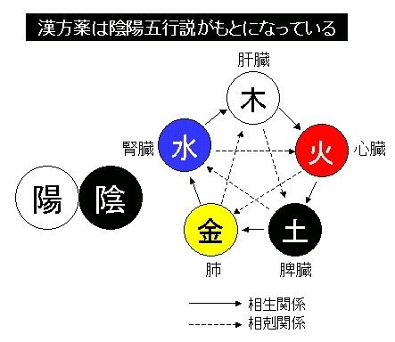 漢方薬と陰陽五行説